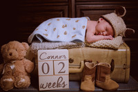Baby Connor 2016